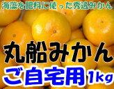 和歌山県有田産丸船みかんご家庭用S〜2Lサイズ1kg5〜15個入訳あり規格外品有田みかん有田ミカン