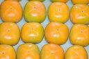 【2021年10月出荷】 柿 種なし柿 約7.5kg 28〜32個入 2L〜3L 贈答用 秀品 たねなし柿 種無し柿 平核無柿 刀根柿柿 10t