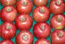 【訳あり】長野産 減農薬 陽光 りんご 約4.5kg12〜16個入 林檎 リンゴ 産地直送