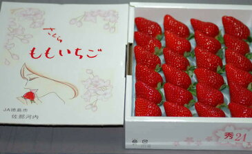 1月以降配送分 徳島産 さくらももいちご 20粒 約700g 化粧箱入
