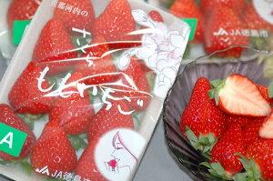 最高糖度17度!ももいちごを上回る甘さ!出たばかりの新品種イチゴ徳島県産さくらももいちご1パ...