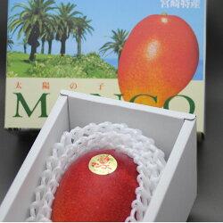 減農薬マンゴー太陽の子2L2玉約700g化粧箱入贈答用ギフト宮崎産地直送SSS宮崎県完熟完熟マンゴー4s母の日