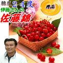 糖度24度 減農薬 山形産 佐藤錦 1.2kg 600gパッ...