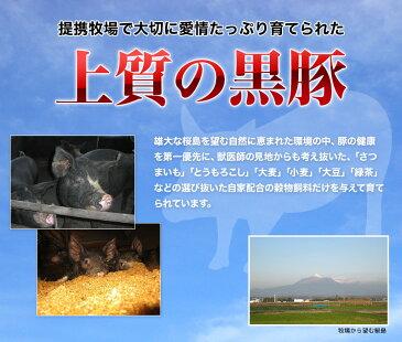 鹿児島 黒豚 バラ 切り落とし 400g 豚肉 ギフト 産地直送