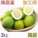 減農薬愛媛産レモン3kg加工用国産産地直送ore