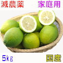 10月以降分予約 減農薬 国産 レモン 5kg 訳あり 愛媛 大三島 ore SSS 10g