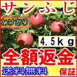 送料無料 糖度15度以上 長野 減農薬 サンふじ 約4.5kg 12〜25個入 ご家庭用 有機肥料使用 林檎 リンゴ りんご 訳あり 産地直送 小山