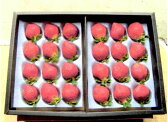 送料無料 産地直送 低農薬 福岡県産あまおう 贈答用 800g 大粒24〜32玉 化粧箱入 いちご 苺 イチゴ あまおう苺