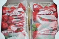 送料無料産地直送低農薬福岡産あまおう贈答用2パック600g大粒18〜22玉産地箱入いちご苺イチゴギフトあまおう苺