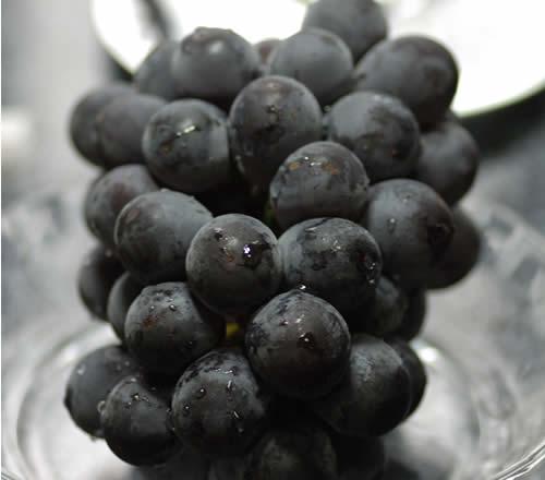フルーツ・果物, ブドウ 2021 2 SSS 9j