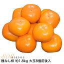 柿 種なし柿 約1.8kg 大玉8個前後入 2L〜3L 贈答...