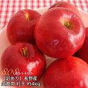 訳あり 減農薬 長野 生食用 紅玉 りんご 約4kg 小玉16〜30個入 リンゴ 林檎 産地直送 小 ...
