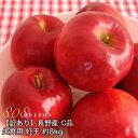 【2021年9月出荷】 訳あり 減農薬 長野 生食用 紅玉 りんご 約8kg C品 小玉32〜60個入 リンゴ 林檎 産地直送 小山 SSS 9g