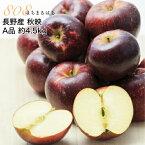 減農薬 長野 秋映 りんご A品 約4.5kg 12〜25個入 秋映え リンゴ 林檎 産地直送 小山 NG 10t