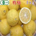 【訳あり】有機JAS 和歌山産 はるか 約5kg みかん サイズ混合 バラ詰め 有機栽培 産地直送