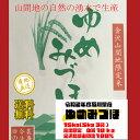 【新米送料無料】令和2年度石川産ゆめみづほ白米13.5kg金沢北部山間地限定