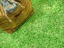 入園・入学にオススメです♪【30cmパネル単位続けてカット】ぷらんぷちぃくす★芝生でゴロン★...