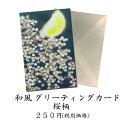 グリーティングカード 和風 桜(さくら)春 月【F25-82...