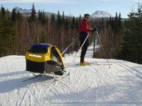 Burley We! Ski Kit(スキーキット) クロスカントリーに、雪道でのお子様の搬送に。良心的な値段設定のBurley We! Ski Kit(スキーキット)です。