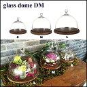 ガラスドーム ガラスケース ディスプレイケース コレクションケース ダ...