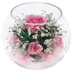 【愛されて20年】【インターナショナルギフトショー受賞】ドライフラワー!ボトルフラワーの花...