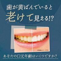 歯を白くするホワイトニング歯磨き粉ジェルはははのは(30g/約1ヶ月分)