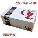 オイスターZ (90粒) 日本クリニック 牡蠣 かき肉エキス 亜鉛 ミネラル 微量栄養素 サプリメント 送料無料 小袋2つのおまけ付き その1