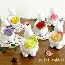 petit rabbit/【楽ギフ_メッセ】【楽ギフ_包装】花 プリザーブドフラワー ブリザードフラワー ブリザード 誕生日祝い 誕生日祝 結婚祝い 結婚祝 退職祝い プレゼント クリスマス ギフト ホワイトデー 雛祭り ウサギ ラビット