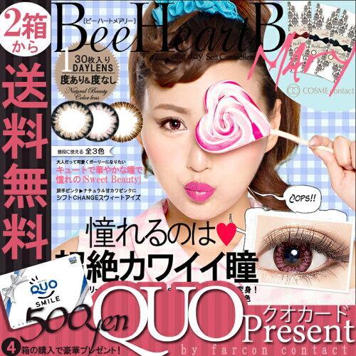 ◆4箱以上で500円QUOカード◆送料無料(定形外)...