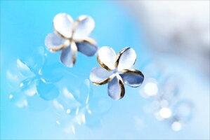 一輪プルメリア(花)花びらライン光沢仕上げイエローゴールドペアカラーレディースハワイアンジュエリーシルバー925スタッドピアス【花/6mm幅】