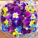 ビオラ/3色すみれ 50輪(食用花)伊勢志摩産・水耕栽培
