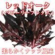 レッドオーク(ベビーリーフレタス)/ Red oak lettuce 50g 伊勢志摩産・水耕栽培