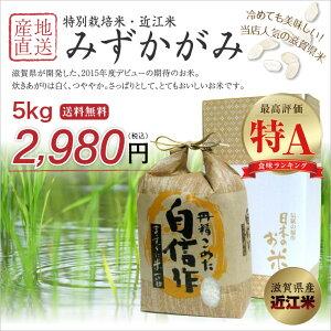【送料無料】【特A】平成27年 滋賀県産 特別栽培米 みずかがみ 5kg 近江米【返品保証】