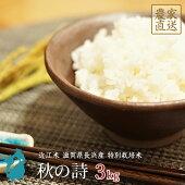 米秋の詩3kg近江米新米特別栽培米令和2年産滋賀県産【送料無料】