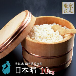 お米 日本晴 10kg 令和2年産 近江米 滋賀県産