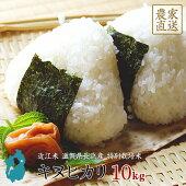 キヌヒカリお米10kg送料無料近江米滋賀県産環境こだわり米令和2年産美味しい玄米白米