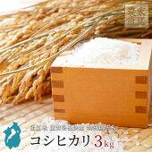 米コシヒカリ3kg新米令和2年産滋賀県産近江米備蓄送料無料