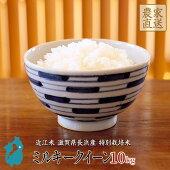 米ミルキークイーン10kg新米近江米令和2年滋賀県産特別栽培米【送料無料】