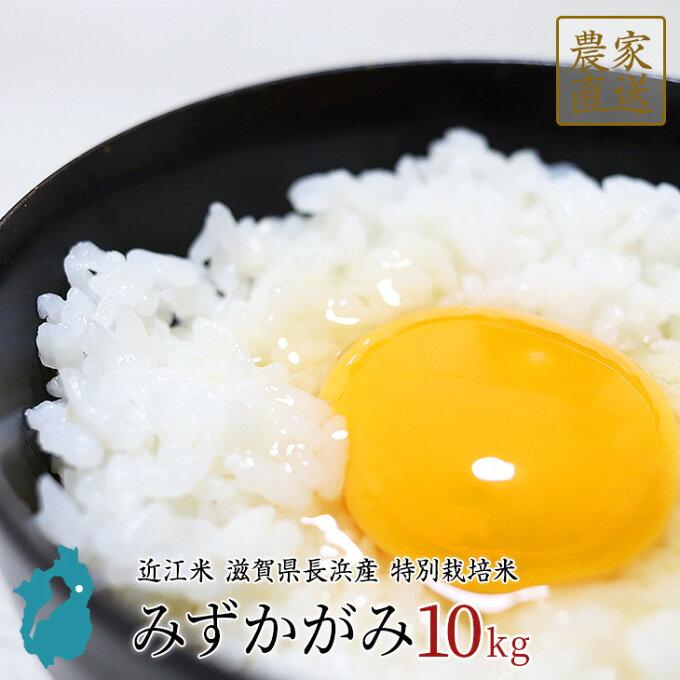 お米 みずかがみ 10kg 令和2年産 近江米 滋賀県産...