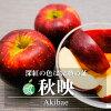秋映(りんご)贈答用約2kg長野県産