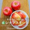 シナノスイート(りんご)贈答用・長野県・高山村産