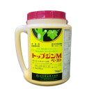 殺菌剤 トップジンMペースト 1kg×5個セット