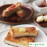 【クーポン配布中】 ミヤマ クラスト miyama crust パン皿 トースト プレート アイボリー 小枝柄 ドット柄 美濃焼 皿 日本製