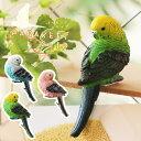 PARAKEET CLIP パラキートクリップ【リアル 鸚哥 いんこ 写真 ポストカード メモ ハン