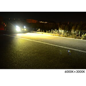 HIDキットバルブ55W超薄型バラストシングルバルブH1/H3/H3C/H7/H8/H11/HB3/HB4【安心1年保証/HIDキット/HIDバルブ/55W/ヘッドライト/HIDキット/フォグ】HIDキット/fcl(エフシーエル)/楽天/通販】