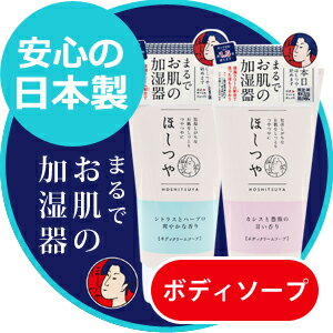 【入浴剤5個付き】まるでお肌の加湿器 ボディソープ しっとりきめ細かい保湿クリーム配合で洗った後のうるおう ほしつや ボディクリームソープ 全身洗浄料 300g 植物由来成分配合 化粧品 日本製