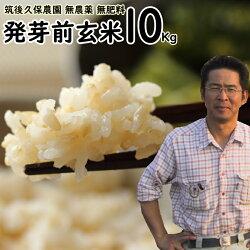 無肥料栽培発芽前玄米10Kg 福岡県産ゆめつくし0.5分づき米筑後久保農園