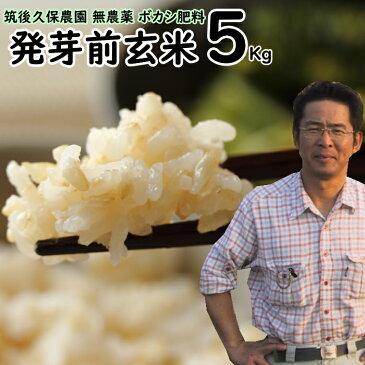 ボカシ肥料栽培 発芽前玄米 5Kg 福岡県産 元気つくし0.5分づき米筑後久保農園