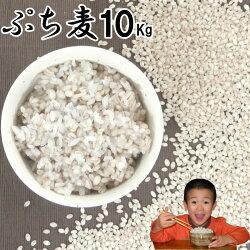 ぷち麦10Kg|無農薬大麦福岡県産筑後久保農園ご飯と一緒に炊いて麦ご飯味噌造り用丸麦
