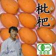 オーガニック 枇杷 12玉|びわ有機JAS認定母の日ギフトに最適【送料無料】~